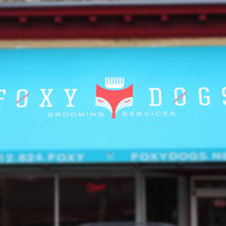FoxyDogs-Dog-Grooming-Minneapolis-Location-Thumb